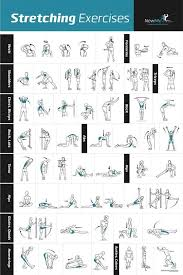 stretching exercises poster newme health exercise fitness exercise and workout