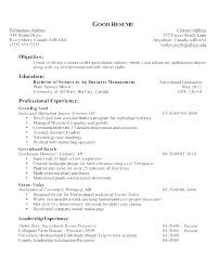 Career Objective Resume Career Objective For Resume Career Objectives Resume Example