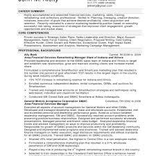 Examples Of Resume Summary For Customer Service professional summary for customer service resume Oylekalakaarico 45