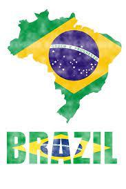 Brazil Flag Journal: Brazil Travel Diary, Brazilian Souvenir, lined Journal  to write in: Journals, Country Flag: 9781721220328: Amazon.com: Books