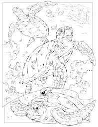 Coloring Pages Ocean Underwater Coloring Pages Ocean Scene Page Fish