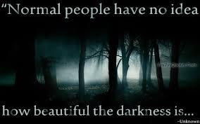 Beauty Of Darkness Quotes