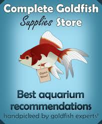 Goldfish Feeding Chart Goldfish Food And Feeding The Ultimate Guidecomplete