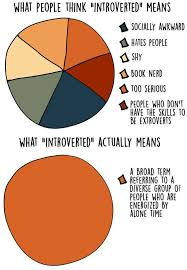 Introvert Chart Pin On Infp Healers