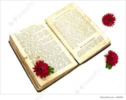 education old open book with three red flowers