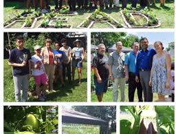 union county freeholder board offers grants for community gardens