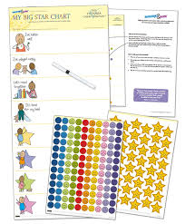 Positive Reinforcement Charts For Kids Kids Reward Chart My Big Star Reward Chart 1yr Manage Difficult Toddler Behaviors With Positive Reinforcement