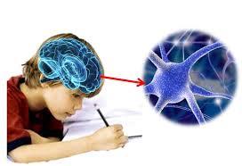 Resultat d'imatges de como potenciar el desarrollo de la escritura en los niños