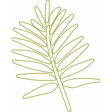 Branch Template Palm Branch Outline 02 Template Graphic By Sheila Reid