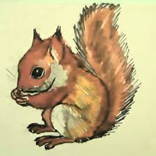 Small Picture How to draw a Squirrel face