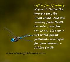 Beautiful Life Poems And Quotes