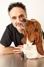 17 best images about amazing irish vet noel fitzpatrick on the official twitter page for the supervet run by the team at fitzpatrick referrals fitzpatrickref surrey