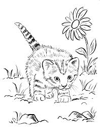 kitten printable coloring pages. Plain Pages Kitten Coloring Sheets Free Page Christmas Hello Kitty    Throughout Kitten Printable Coloring Pages I