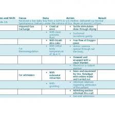 Sample Charting Fdar In Delivery Fdar Nurses Notes Pqn86rgop2l1