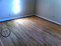 glamorous removing pet stains from hardwood floors how to remove urine odor wood floor cleaning old