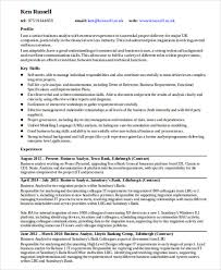 10 Business Analyst Curriculum Vitae Templates Pdf Doc Free