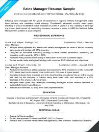 Sample Resume Of Sales Manager In Insurance Professional User