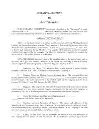 Basic Llc Operating Agreement By Jmcinerny Llc Partnership