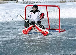the following categories are also under hockey netting