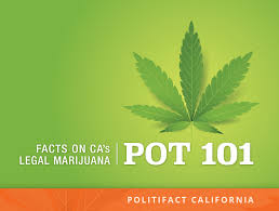 At Kids Pot There Near Update Smoking Limits On Home 101 Are q0Axpwv0