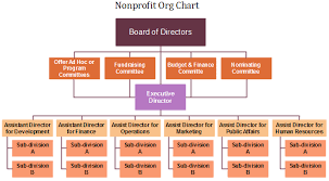 Non Profit Structure Flow Chart Nonprofit Org Chart Definition Key Points Org Charting