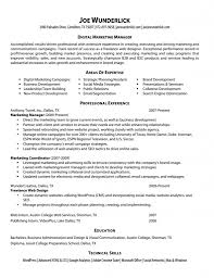 marketing resume website job sample resumes web designer resume examples samples resume cv pertaining to marketing resume website marketing resume website middot