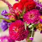 Flowers in Season: July | BridalGuide