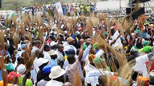 Image result for apc primaries in local government election in lagos state