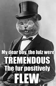 posh | CAT MACROS via Relatably.com