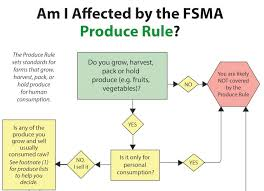 Updated Resources Food Safety Modernization Act Flow