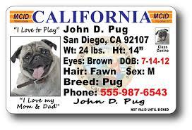 California License License California California Drivers Drivers