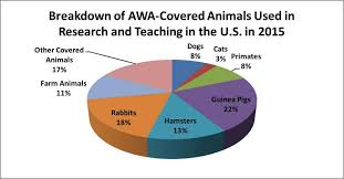 Animal Research Numbers Continue Downward Trend National
