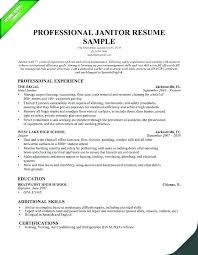 Skills Abilities Resume Classy Additional Skills On Resume Worldwidejibaroco