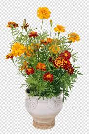 Marigold Floral Design Floral Design Flowerpot Marigold Cut Flowers Marigold