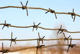 barbed wire fences. Brilliant Fences Barbed Wire Fences Throughout Wire Fences