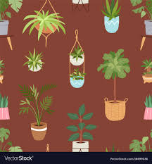 Indoor home office plants royalty Illustration House Indoor Plants And Nature Homemade Vector Image Vectorstock House Indoor Plants And Nature Homemade Royalty Free Vector