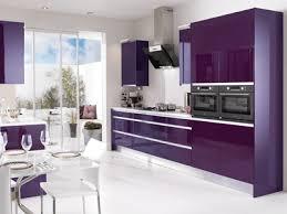 kitchen design purple and white. purple kitchen cabinets modern color schemes design and white n