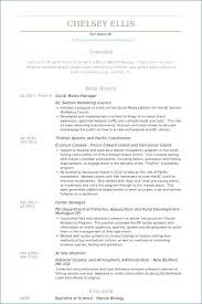 Social Media Resume Samples Media Director Resume Sample Resume A ...