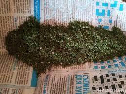 Жителя Щастинського району засуджено за зберігання наркотичних засобів