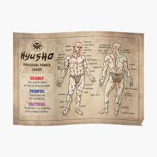 Dim Mak Points Chart Kyusho Human Body Pressure Points Poster