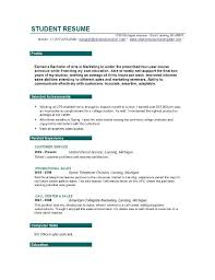 Resume Objective Examples For Students 4 Sample Objectives College