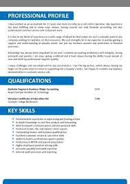 best resume tips resume format tips