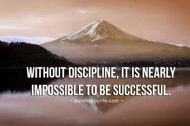 Discipline Quotes Impressive Success Quotes Without Discipline It Is Nearly