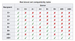 parent blood types chart students explore blood type chemistry