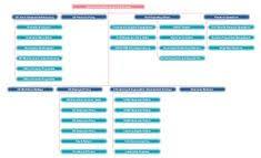 10 Best Organization Charts Images Organizational Chart
