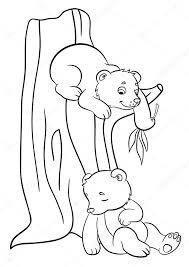 Kleurplaten Wilde Dieren Twee Kleine Schattige Baby Beren