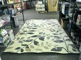 orian rugs anderson sc rug rugs ivory area rug rugs in south rugs orian rugs plant