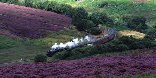 Image result for north yorkshire moors railway