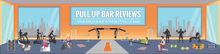 pull up bar reviews guide