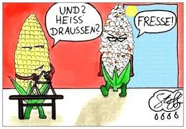 Lustige Bilder Sommerhitze Bilder Und Sprüche Für Whatsapp Und